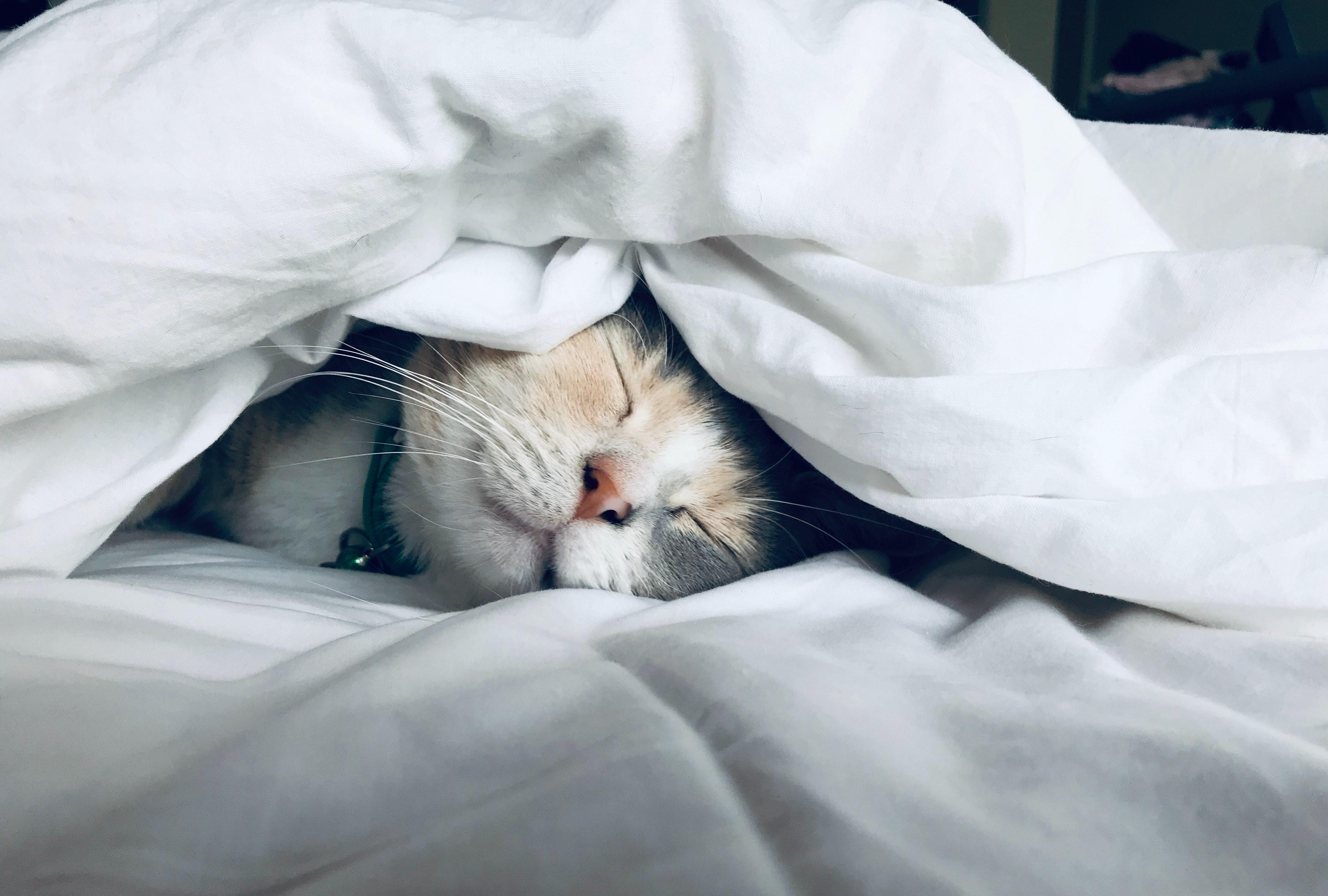 Termin verschlafen?